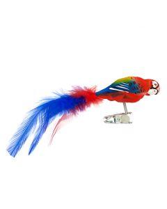 Glasvogel, bunter Papagei mit Federn